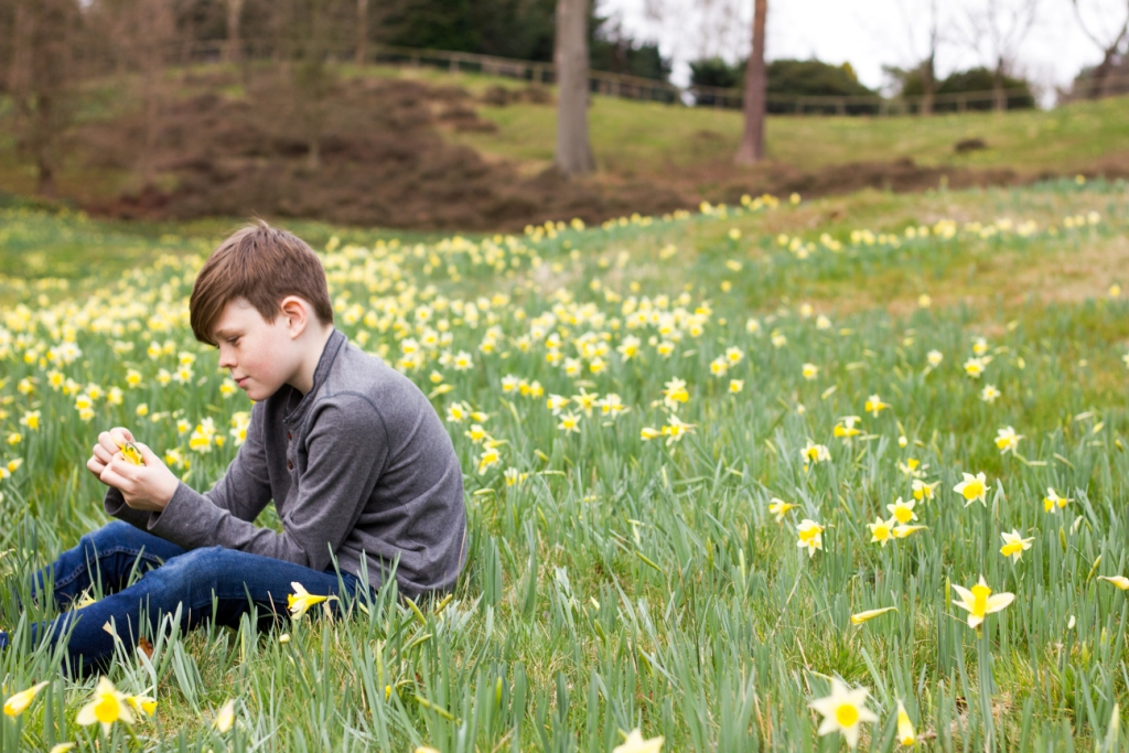 Older boy sitting among daffodils